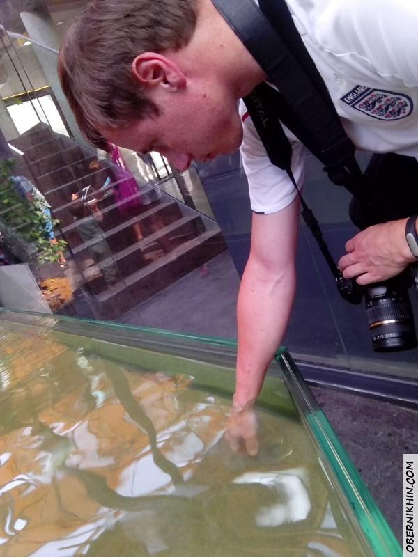 Игорю чистят руки рыбки :)